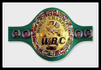belt_wbc1